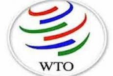 دانلود پاورپوینت بررسی گزارش تجارت جهانی